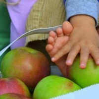 apples_children_XSmall