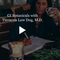 GI Botanicals Dr. Low Dog
